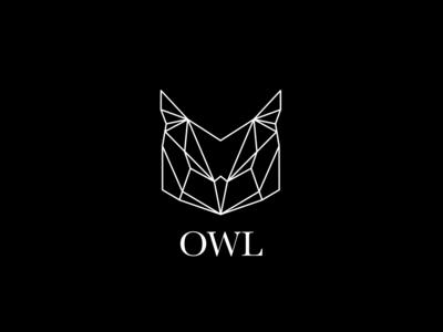 Geometric Owl Logo