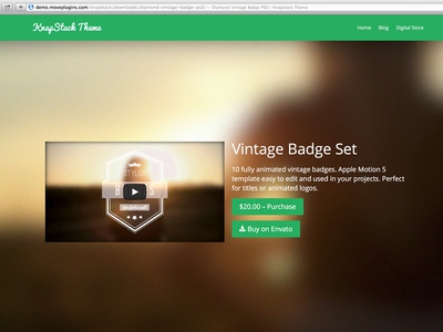 "Single ""buy"" page layout e-commerce wordpress theme layout page vintage flat simple web"