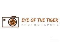 Day 8  Eye Of The Tiger