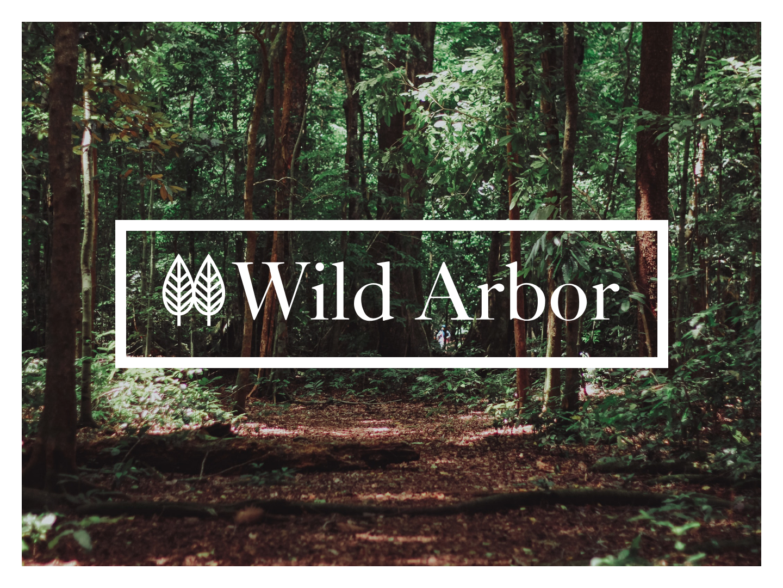 Wild about this Brand serif logo serif font design identity logo brand