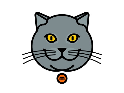 Massimo the cat chunky meow eyes yellow feline british massimo blue grey british shorthair my cat cat