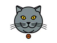 Massimo the cat