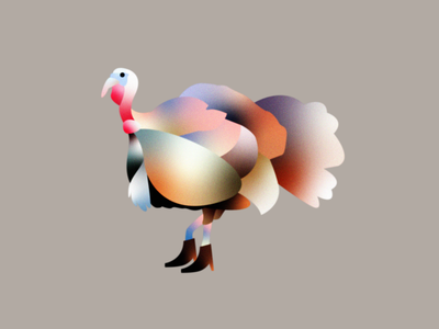 Party Turkey bird thanksgiving gradient vector texture editorial branding illustration boots turkey