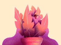 Plant creepin