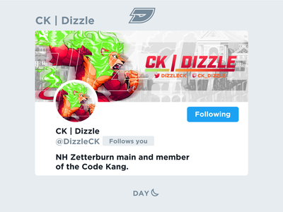 Dizzle | Social Media Layout graphic stream twitch twitter header layout design ssb roa zetterburn lion platform aether rivals fighting fgc esports gaming game
