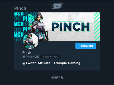 Pinch | Social Media Layout graphic design shooter healer sage valorant mixer youtube twitter twitch live stream layout header gaming game esports