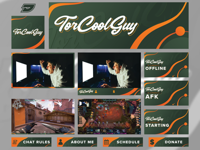 TorCoolGuy | Twitch Branding facecam youtube header screen panel layout tft valorant esports gaming game live twitch stream graphic branding design brand