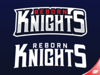 Reborn Knights - Text Logo