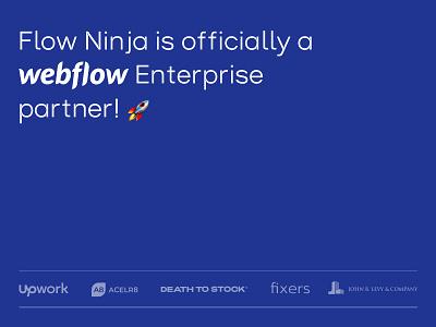 Webflow Enterprise Partner agency design development enterprise webflow