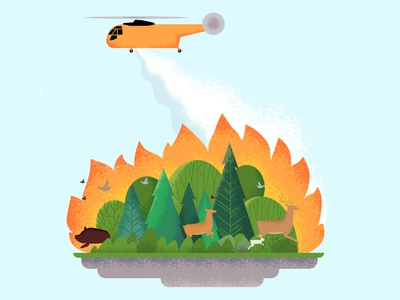 Forests and Wildfires: Fixing the Future by Avoiding the Past