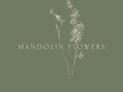 Mandolin Flowers Logo