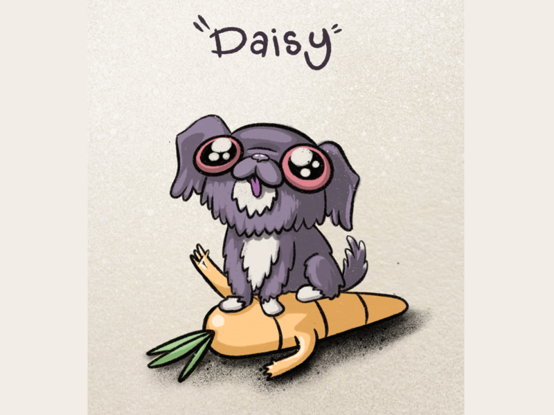 Friends daisy candy plush carrot pink fluffy dog illustration animal puppy dog cute texture procreate character illustration