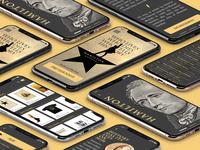 Hamilton App UX UI