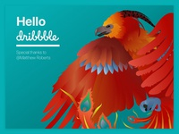 Hey Dribbble - Project Phoniksa III