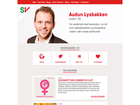 Website for Audun Lusbakken