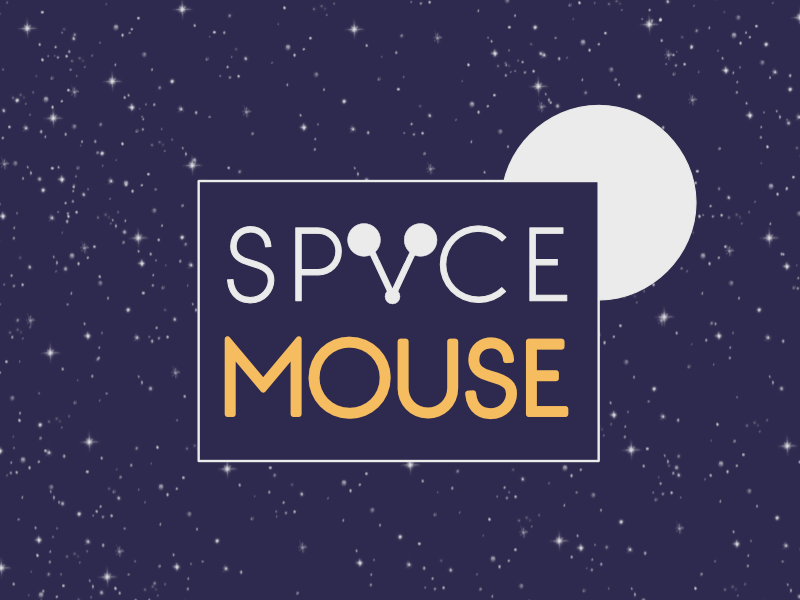 Space Mouse space mouse spacemouse 1 week brandom typehue