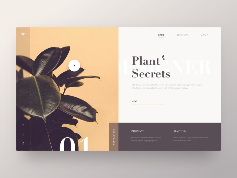 Plant Secrets Web yellow webdesign minimal retro web plant layout design