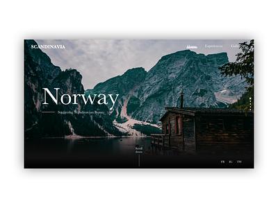 Website Exploration #3 ui design web design website
