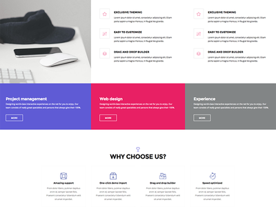 Agency about page icon font icons titles features icon box touchsize colors design card business agency about