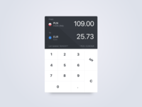 Currency Conversion App Concept