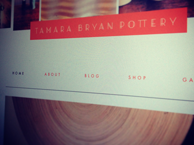 Tamara Bryan Pottery website pottery