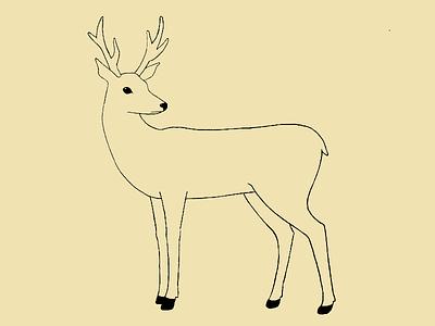 Deer animal drawing illustration deer