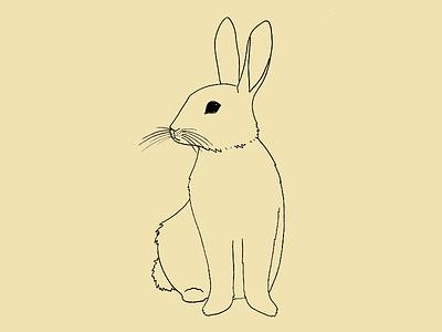 Rabbit illustration drawing bunny rabbit animal