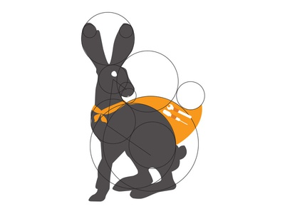 The Super Rabbit