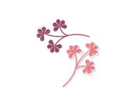 Plant cuttings illustrations