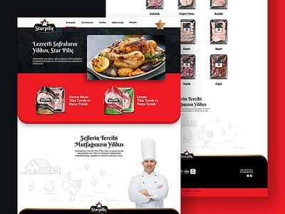 Star Pilic Web Page interface website web ui webdesign design illustration