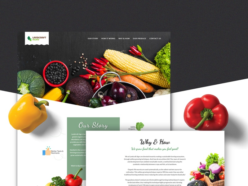 Landcraft Agro wordpress design responsive design website design vegetable food organic organic food illustrations mobile designs app creativity branding illustration ux ui design