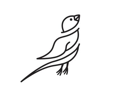 Windy Sparrow