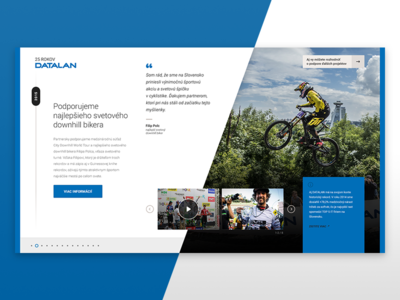 25 Years of Datalan, Project Detail
