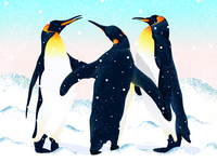 A warm penguin--A family of three--illustration