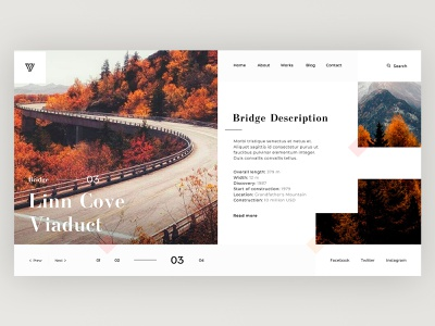Bridge Linn Cove - Home screen minimal product concept beautiful home social app website design web ux ui