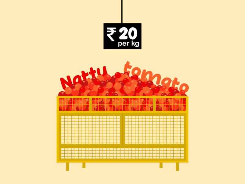 Naatu tomato naatutomato colour illustrator sketch flatillustration illustrations tomatoes tomato