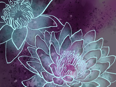 Water Lily work in progress wacom water lily illustration digital sketch photoshop