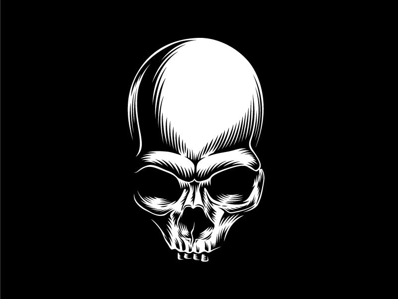 Skull illustration edm. music illustration vector skull