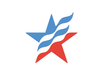 Patriotic Star 📌 Logo for Sale logo unique eagle republican democratic vote elections wings club patriot army independence power freedom fly blue red flag star