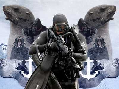 Seals vs Ninjas ninjas seals navy photoshop collage editorial