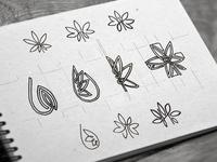 leaf sketches medical leaf logo