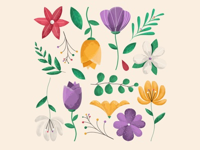 Spring plant colorful summer flower spring draw graphic design illustration