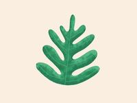 Spring - Plant 02