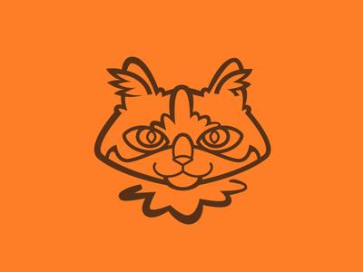 Bonz asshole tabby orange cat