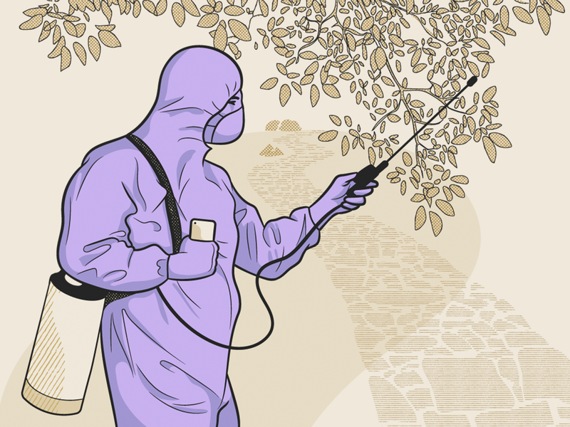 Pest Control Illustration service garden tree violet monochromatic work worker man flat application people platform illustration