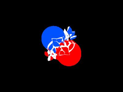 Battle Ball game logo