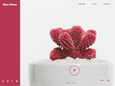 Mini Plant plants typography ux ui flat coloful illustrator ios app branding illustration design