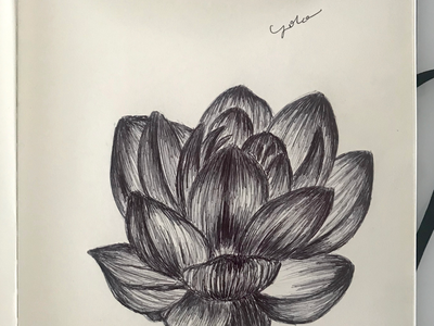 Ballpen Flower 🌺