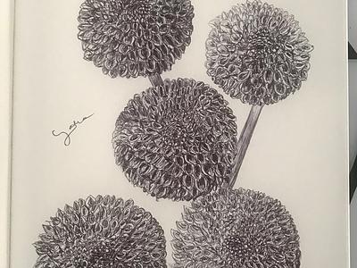 Ballpen Flower 🌸