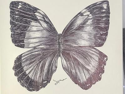 Ballpen Butterflies 🦋